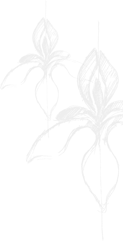 perunike-podstran